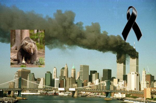 11 settembre Deniza